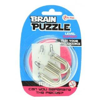 Braincracker Brain Puzzleexperte Silber