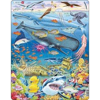 Puzzle Maxi Stille Oceaan66 Teile