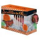 Wachsender Dinosaurier T-Rex Xxl 50 Cm