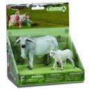 Bauernhoftiere: Spielset Im Geschenkkarton In 2 Teilen