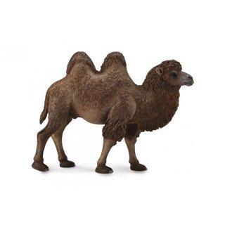 Wildlife Camel 12,4 X 9,5 Cm