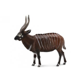 Wildlife Xl Bongo 12,2X11,2 Cm