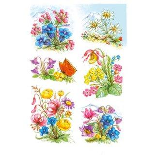 Etiketten 6 Stück 16 X 9 Cm Blumen