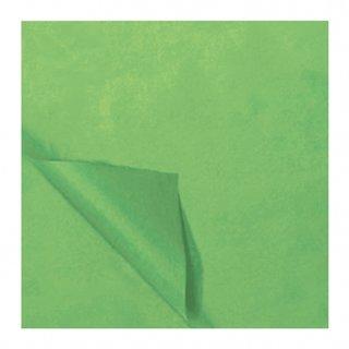 Rolle Seidenpapier 50 X 70 Cm Hellgrün